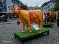 Fiberglass cow, Fall Festival, Bolzano